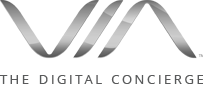 VIA International logo