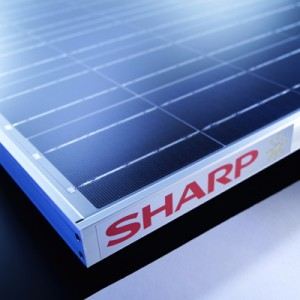 Photo of Sharp solar panel
