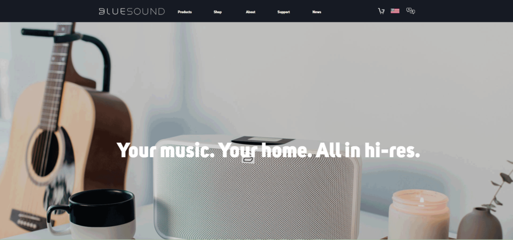 photo of Bluesound website