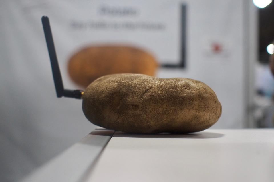 neuraspud 'smart' potato