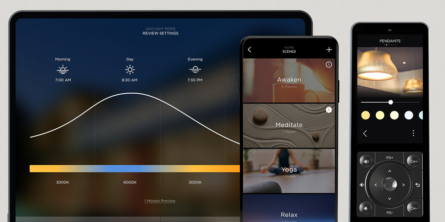 Savant user interface